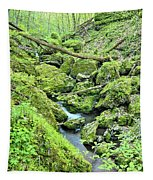 Above Moine Creek 2 Tapestry