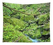 Above Moine Creek Tapestry