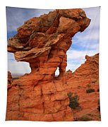 Abstract Erosion Tapestry