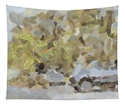 Abstract Image Of Car Passing Through A Dust Storm Tapestry