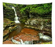 Adams Falls Landscape Tapestry