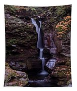 Adams Falls Pa Autumn Tapestry
