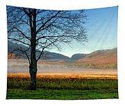 Adirondack Landscape 1 Tapestry