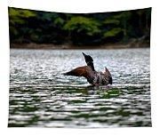 Adirondack Loon 4 Tapestry