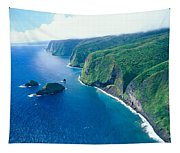 Aerial Of North Shore Tapestry