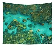 Aerial Of Two Kayakers Tapestry