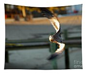 Aeronautical Acrobatics Tapestry