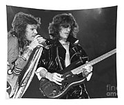 Aerosmith Tyler And Perry Tapestry