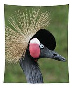 African Crowned Crane #7 Tapestry