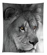 African Lion #8 Black And White  T O C Tapestry