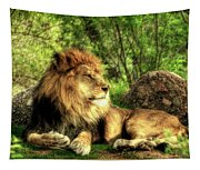 African Lion  Tapestry