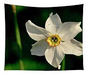 Afternoon Of Narcissus Poeticus. Tapestry