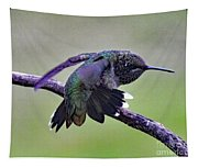 Aggressive Behavior - Ruby-throated Hummingbird Tapestry