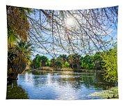 Agua Caliente Tapestry