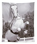 Airs Above The Ground - Lipizzan Stallion Rearing Tapestry
