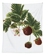Akala Berries Tapestry