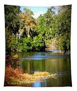 Alafia River Tapestry