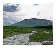 Alaska Denali National Park Landscape 1 Tapestry