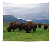 Alaska Wood Bison Tapestry