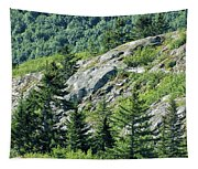 Alaskan Wilderness Tapestry