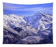 Alcazaba 3315 Meters And Vacares Tapestry