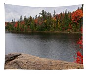 Algonquin Provincial Park Ontario Tapestry