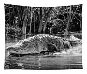 Alligator Bags Of Port Aransas Tapestry