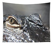 Alligator Eye Tapestry