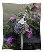 Allium Blossom With Cap Tapestry