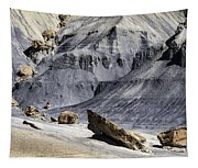 Allstrom Point Rocks 2436 Tapestry