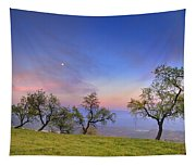 Almonds And Moon Tapestry