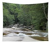 Along The Hiking Trail Tapestry