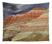 Along The Paria Tapestry