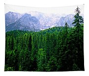 Alpine Forest Tapestry