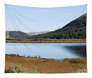 Alpine Lake In The Arapahoe National Forest Tapestry