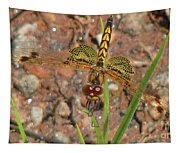 Amanda's Pennant Dragonfly Female Tapestry