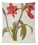 Amaryllis Brasiliensis Tapestry