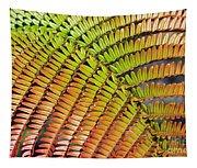 Amaumau Fern Frond Tapestry