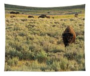 American Bison Tapestry