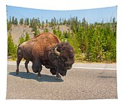 American Bison Sharing The Road In Yellowstone Tapestry