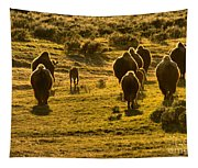 American Bison Sunset March Tapestry