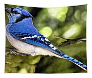 Blue Jay Bokeh Tapestry