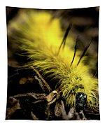 American Dagger Moth Caterpillar Tapestry