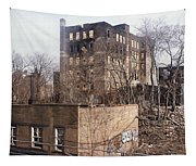 American Ghetto - The South Bronx In New York City Tapestry