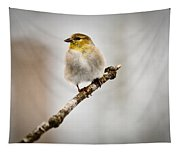 American Golden Finch Winter Plumage 6 Tapestry