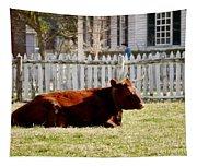 American Milking Devon In Spring Tapestry