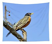 American Robin - 1 Tapestry