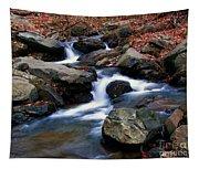 Amicalola Stream Tapestry