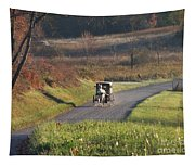 Amish Country Horse And Buggy In Autumn Tapestry
