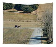 Amish Horse And Buggy On A Country Road Tapestry
